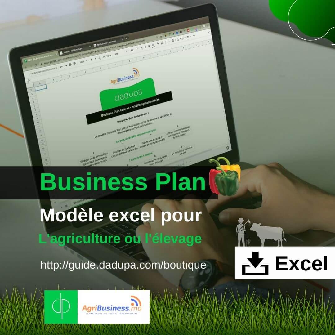 dadupa Business Plan modèle Excel pour projet agricole ou d'élevage